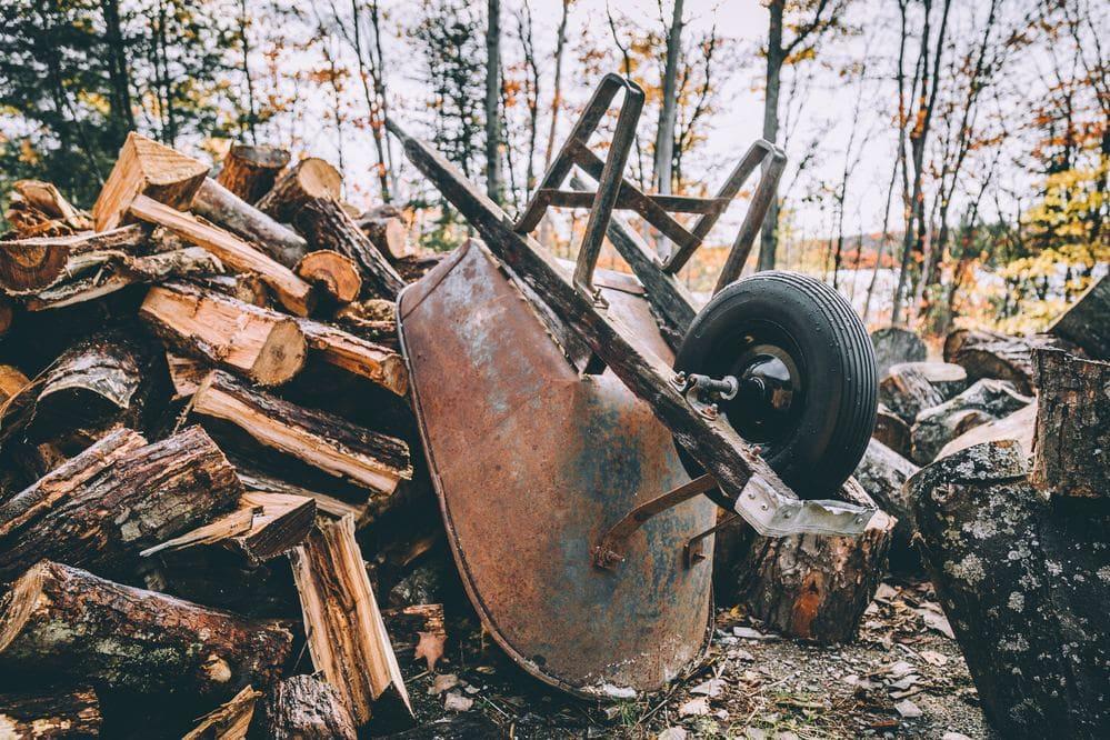 Der beharrliche Holzfäller