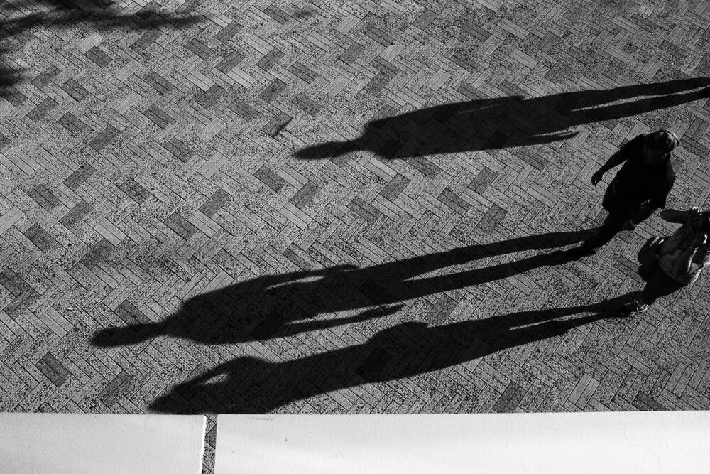 Konzept der Schattenanteile von Jung