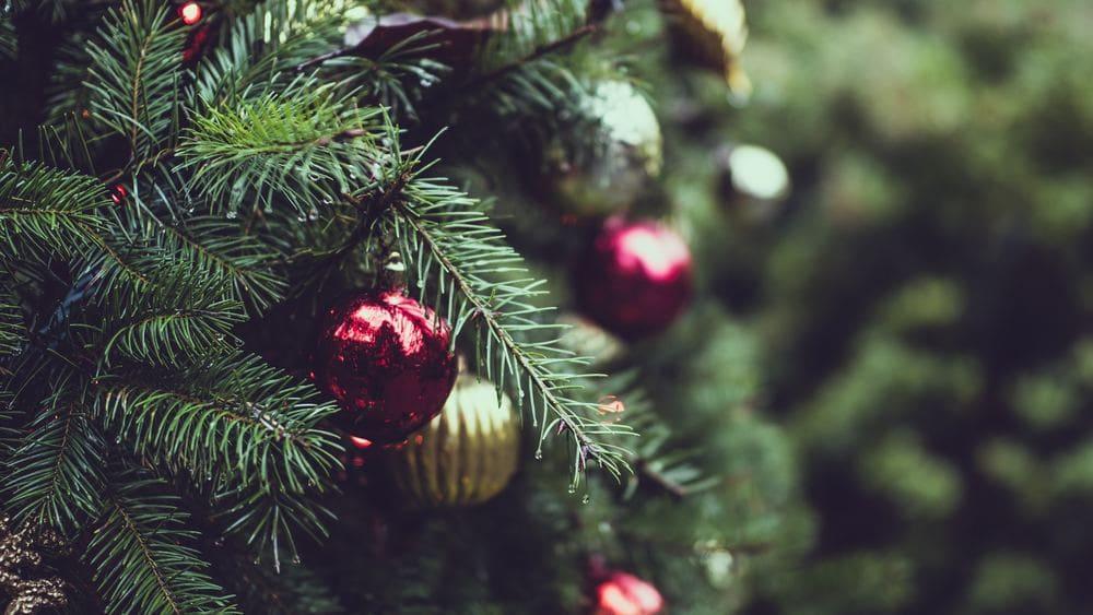 Stressfreies Weihnachtsfest