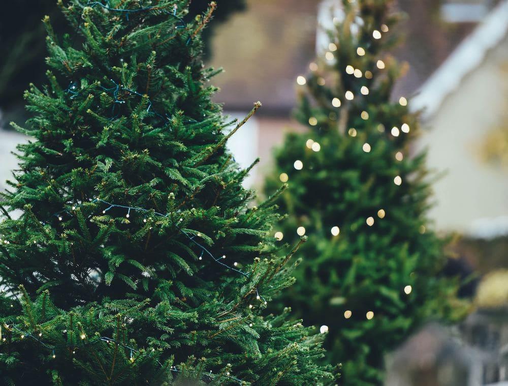 Weihnachten in der Fernbeziehung