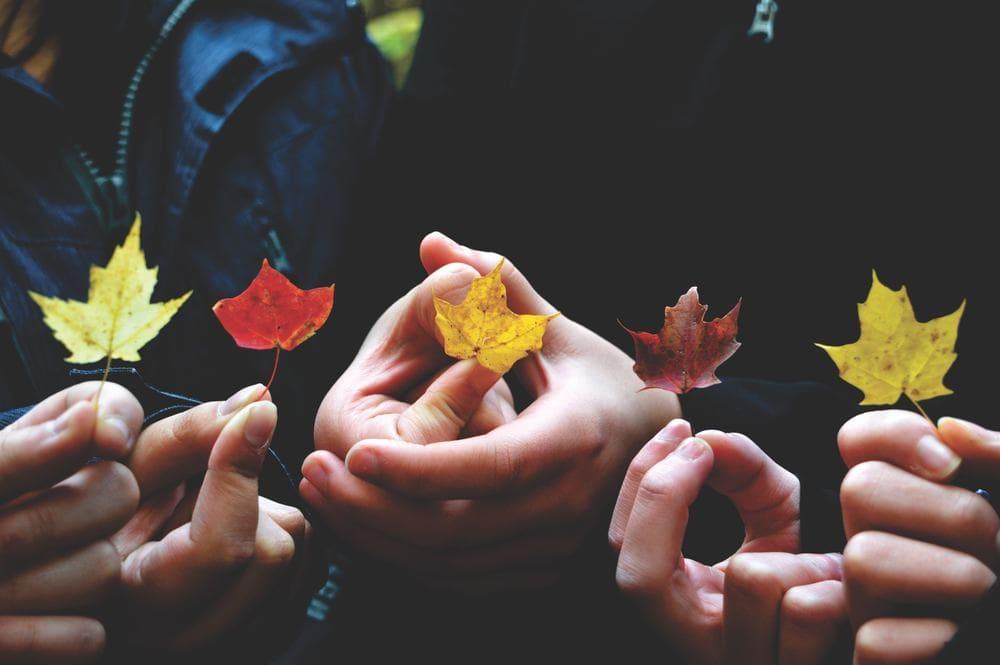 Ziel Erreichen Tipp Konsequent Umsetzen Beratung Psychologisch Online Hilfe Therapie Fernbeziehung